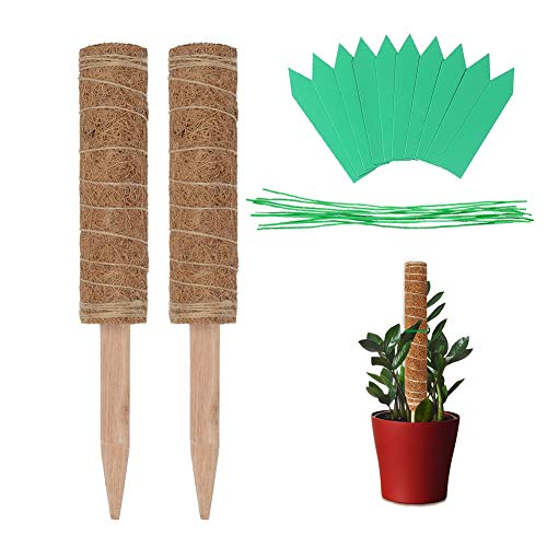 Mengxin 30cm 2 Pezzi Totem di Cocco per Pianta Rampicante Bastoncino di Muschio di Cocco con 100 Pezzi di Cravatte da Giardino e 20 Etichette di Piante