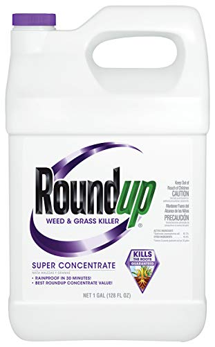 Roundup Weed & Grass Killer Super Concentrate, 1-gallon