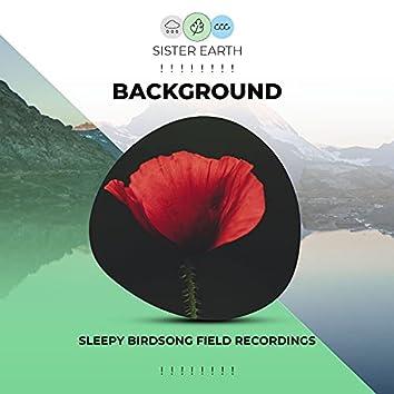 ! ! ! ! ! ! ! ! Background Sleepy Birdsong Field Recordings ! ! ! ! ! ! ! !