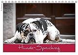 Hunde-Spruchreif (Tischkalender 2020 DIN A5 quer): Ein Kalender für Hundefreunde (Monatskalender, 14 Seiten ) (CALVENDO Tiere)