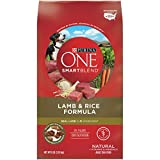 Purina ONE Natural Dry Dog Food, SmartBlend Lamb & Rice Formula - 8 lb. Bag