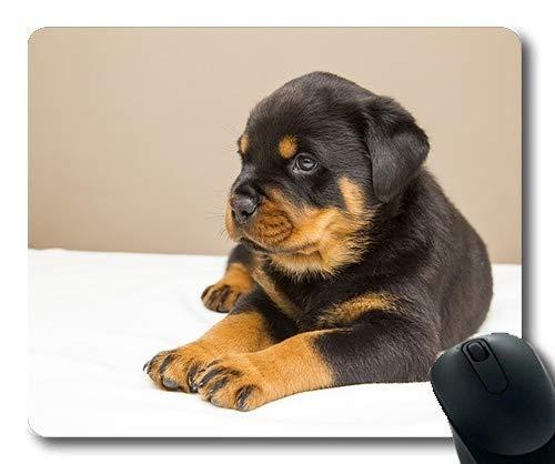 Individuelle Mousepad, Hunde Welpen Pet - bierdeckel, die Hunde Rottweiler Welpen Hund Schön, der Hund Gaming Mouse Pad