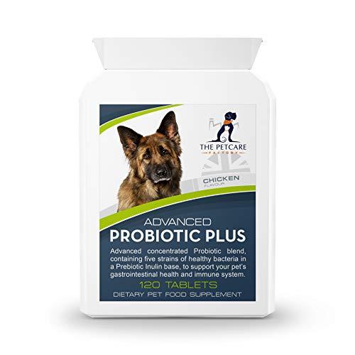 Advanced Probiotic Plus, 5 Strains of Bacteria in a Prebiotic Inulin Base,...