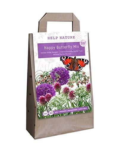 Blumenzwiebel-Mix Happy Butterfly - 40 Blumenzwiebeln - schmetterlingsfreundliche Zwiebelmischung für bunte Blumenbeete im Frühling