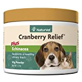 natural remedy for canine incontinence