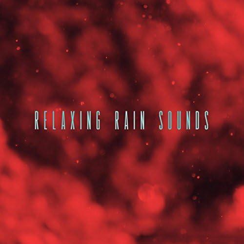 Nature Sounds, Rain Sounds & Rain