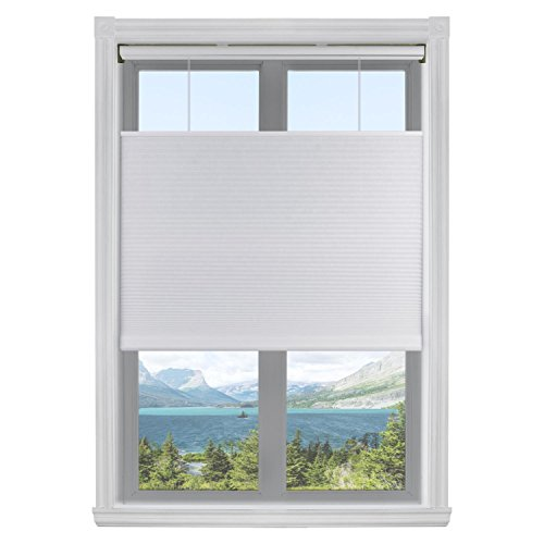 Calyx Interiors Top Down Bottom Up 3/8'Single Light Filtering Cordless Cellular Shades TDBU, 32.5'W x 60'H, White