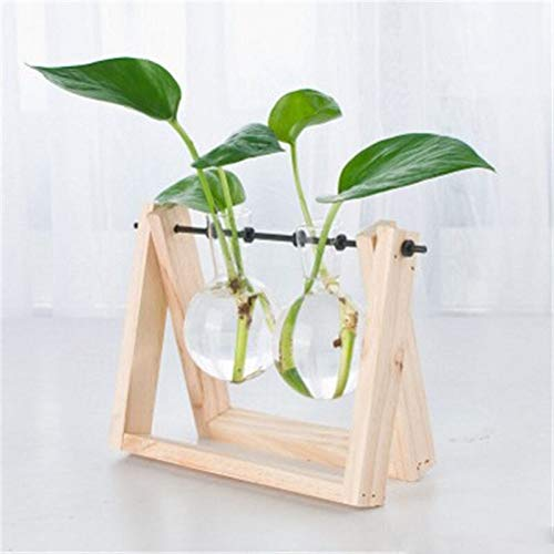 DFYYQ Blume Vase Container Hydroponic...