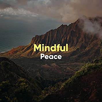 # 1 Album: Mindful Peace
