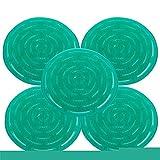 Dr. Becher duftendes Urinal-Sieb Duft: grüne Pinie (5er Pack)