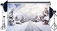 GooEoo 9x6ft メリークリスマスのテーマアンティークの森の木々冬のシーン雪に覆われた風景写真背景スタジオ写真ブースブース背景家族休暇誕生日パーティー写真ビニール素材