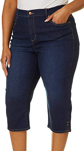 Gloria Vanderbilt Women's Plus Size Amanda Capri Jeans, Madison, 20W