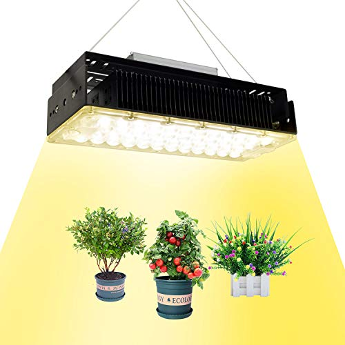 LED植物成長ランプ 植物育成ライト 全なスペクトル植物ライト 家庭菜園 野菜工場 日照不足解消 低消耗 屋内水耕栽培温室野菜植物と花種まきから収穫まで 2年保証 (1000W)