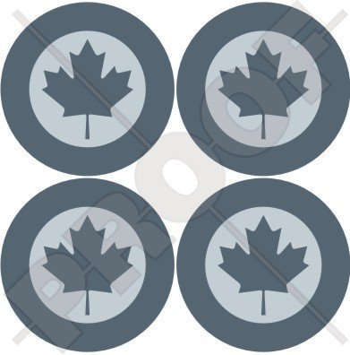 CANADA Canadian AirForce RCAF AIRCOM LowVis Aircraft Roundels 2