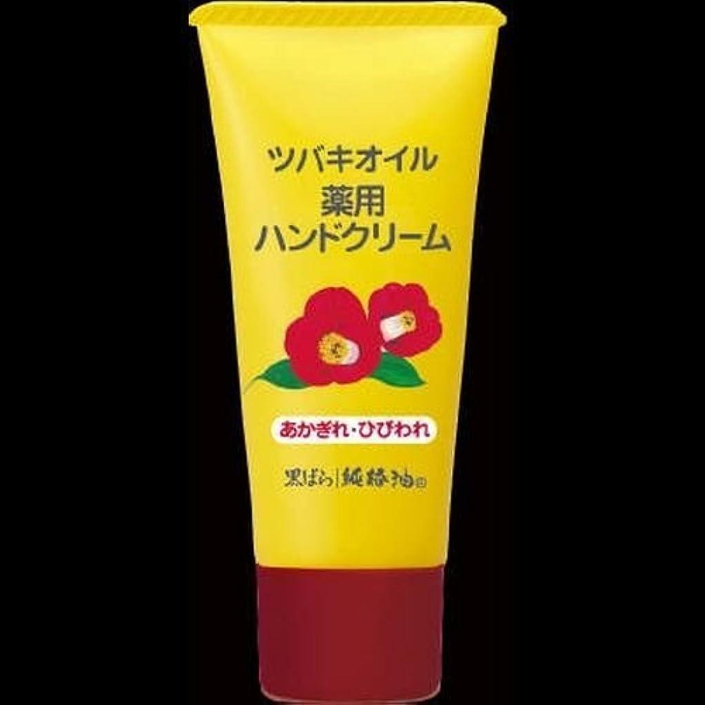 ボトルネックレンダリングホバー【まとめ買い】黒ばら本舗 椿オイルハンドクリーム 35g ×2セット