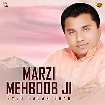 Marzi Mehboob Ji, Vol. 14