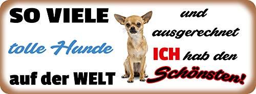 Deko7 metalen bord 27 x 10 cm zo veel leuke honden op de wereld en uitgerekend ik hab den Schönsten