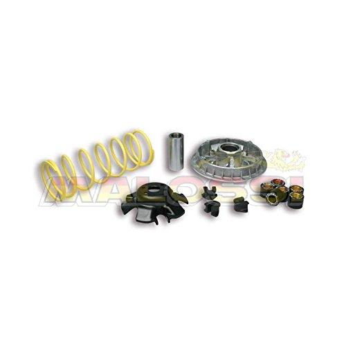 Variador Malossi Multivar 2000kymcogrand Dink 250People S 250Yup Malossi 5111838