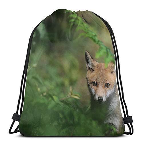 Affordable shop Fox Fox Fox Grass - Mochila ligera con cordón para gimnasio, viajes, yoga, bolsa de hombro para senderismo, natación, playa