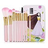YSSGTT Juego de brochas de maquillaje, 10 piezas, para colorete, sombra de cejas, labios, con caja de hierro para mujeres