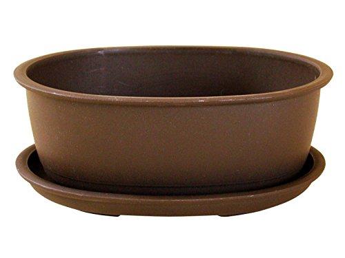 Bonsaischale aus Kunststoff mit dunkelbraunen Untersätzer Länge: 16cm - Breite: 12,5cm - Höhe: 6cm ovale Form