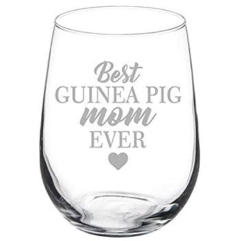 guinea pig glasses