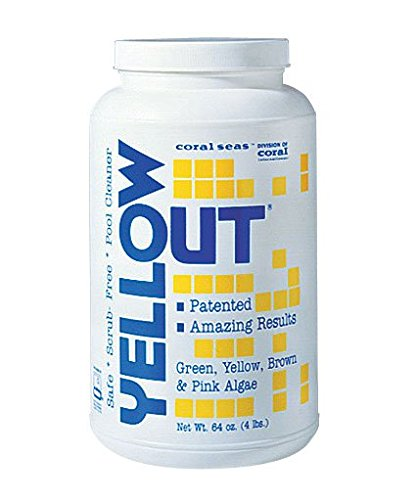 Yellow Out Swimming Pool Chlorine Shock Enhancing Treatment - 4 lbs.