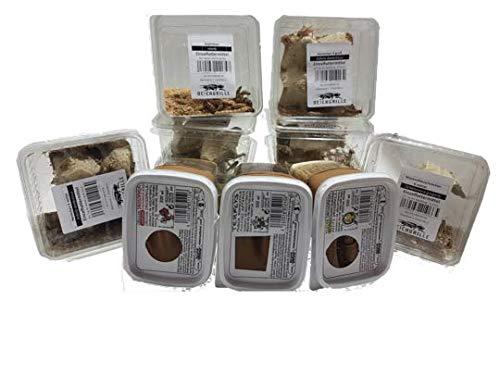 Zoo-Papp Steppengrillen, klein ca 60 Stück In Dosen Futterinsekten | Futtertiere | Gryllus assimilis