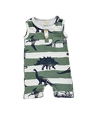 Eghunooze Conjunto de ropa de verano para bebé, 2 piezas, diseño de dinosaurio, sin mangas, acanalado, camiseta con cordón, pantalones cortos