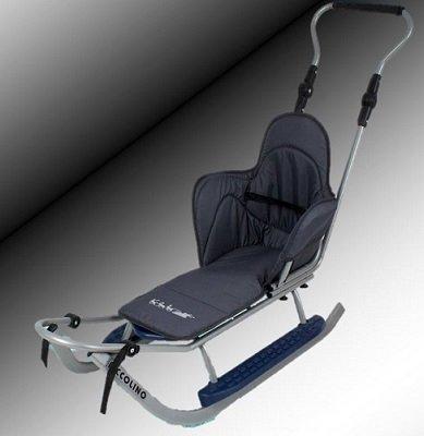 Unbekannt Sport Schlitten mit Lehne,Sitzauflage,Stange,Verschiedene Farbvarianten (Silber-grau)