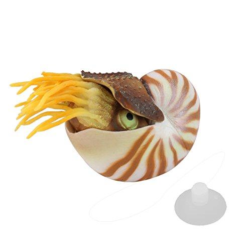 Sourcingmap® Aquarium Künstliche Nautilus Meeresmuschel Wesen Verzierung Tier Dekor de