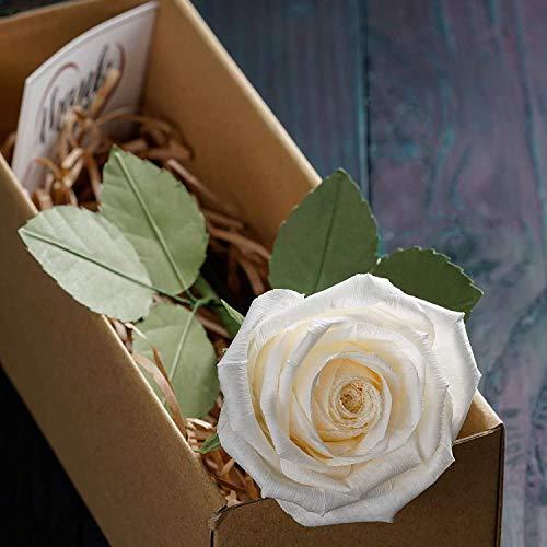 Camellia Bees Handgemachte weiße Rose aus Papier - Ewige Papierrose in Weiss– Infinity Rosen als Geschenk für Frauen zu Geburtstag, Hochzeit, Valentinstag - Edle Kunstrose als Deko - weiß…