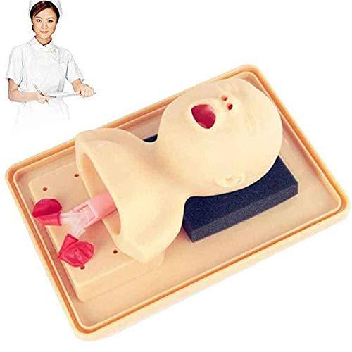 Tracheal Intubation Training Manikin, Baby Training Simulator - School Teaching Tool Lab Supplies - Airway Management Trainer