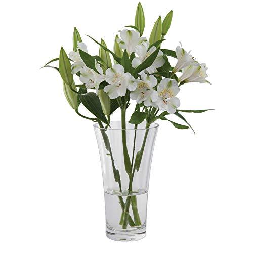 Dartington Crystal Vase étroit et Haut évasé pour Vase-Transparent