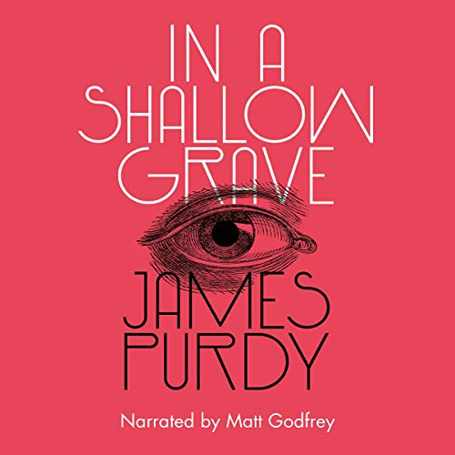 In a Shallow Grave cover art