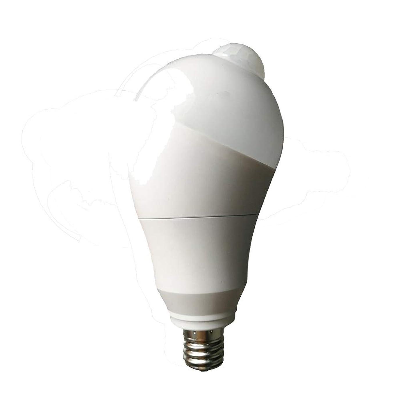 カヌー取り付け羊のSunwow LED人感センサー電球 LED電球 口金直径17mm 9W 900LM 60W相当 昼白色 明暗と人感センサー付き ベッドサイドランプ (昼白色9W-E17)