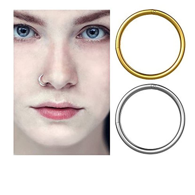 YHMALL Steel Hinged Clicker Seamless Piercing Nose Ring Hoop Lip Ear Ring-8mm kiruabzc17453667