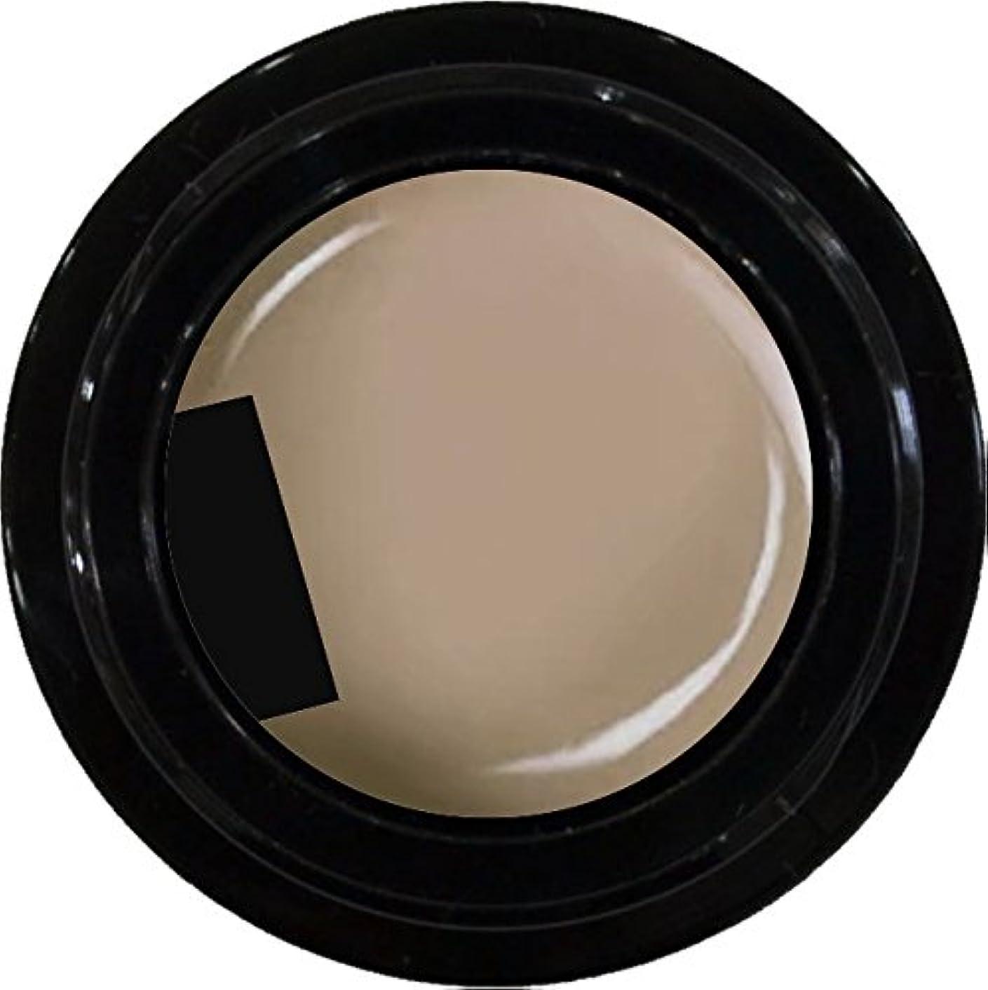 精査やさしいシチリアカラージェル enchant color gel M102 CafeLatte 3g/ マットカラージェル M102 カフェラテ 3グラム