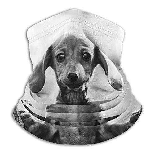 Schattige babytekkel hondenhals gazas warmer winddichte skiafdekking