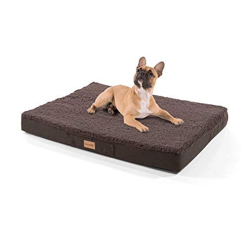 brunolie Balu mittleres Hundebett in Dunkelbraun, waschbar, orthopädisch und rutschfest, kuscheliges Hundekissen mit atmungsaktivem Memory-Schaum, Größe M (79 x 60 x 8 cm)