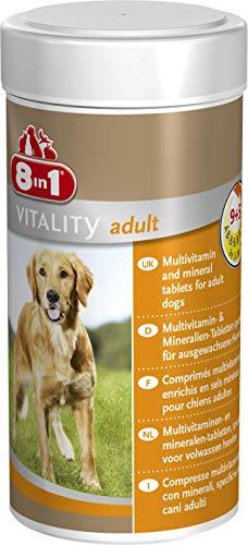 8in1 Multi Vitamin Tabletten Adult, zur Nahrungsergänzung bei erwachsenen Hunden, 1 Dose (1 x 70 Tabletten)