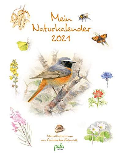 Mein Naturkalender 2021: Naturillustrationen von Christopher Schmidt