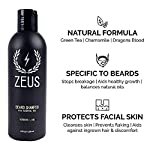 ZEUS Men's Premium Grooming Set – Complete Beard Care, Beard Shampoo & Conditioner, Beard Oil & Balm, Beard Brush & Comb… 3