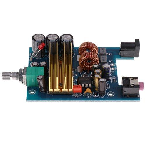 1x Tableros Amplificadores de Potencia Digital Subwoofer de Graves 100W Herramientas