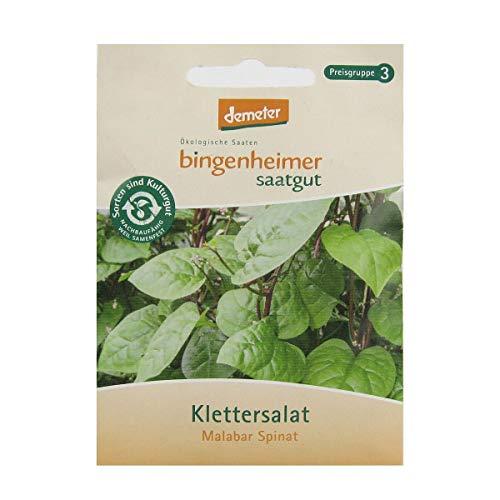 Bingenheimer Saatgut - Klettersalat Malabar Spinat - 1 Tüte