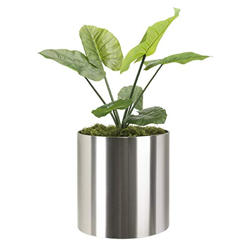 """Modern Knox Brushed Stainless Steel Planter Best Round Metal Planter Indoor Outdoor Pot Medium 12"""" x 12"""" Inch Tall Contemporary Heavy-Duty Cylinder, Architectural Floor Planter, Table Top Plant Pot"""