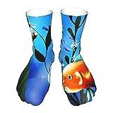 JL85hao Calcetines casuales ecológicos suaves y ligeros azules de las algas de los pescados del acuario del vector para las mujeres y los hombres