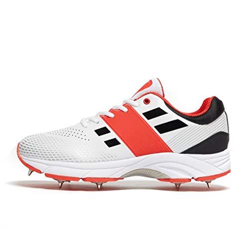 Graue Nicolls Velocity 2.0 Spike Herren Cricket-Schuhe, Weiß, 44