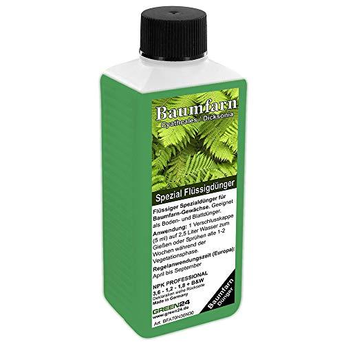 GREEN24 Baumfarn-Dünger HIGH-TECH NPK für Cyatheales, Dicksonia Pflanzen in Beet und Kübel (Fertilizer)