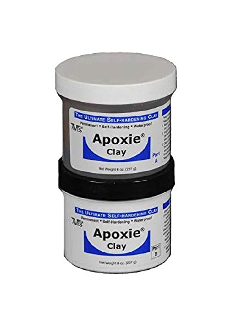 Aves Apoxie Air Dry Clay for Professionals - Self Hardening Modeling Clay, Waterproof Sculpting Clay Made for Detail - No Cracking Modeling Clay - 2 Part Epoxy Clay for Sculpting, Natural (1 Lb)